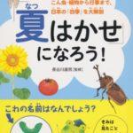 世界の夏祭り|日本の夏についての絵本≪「夏はかせ」になろう!≫