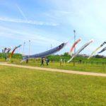 国分川鯉のぼりフェスティバル2019午前中の様子
