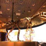 上野にある国立科学博物館ー恐竜に会いに行こう!