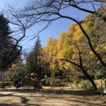 里見公園|駐車場|千葉県市川市|子どもと犬と遊びに行ける公園|おでかけスポット