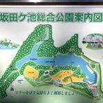 坂田ヶ池総合公園|駐車場|千葉県成田市の子どもと犬と遊びに行ける公園|お出かけスポット