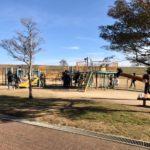 野田市スポーツ公園|千葉県野田市の子どもと犬と遊びに行ける公園|駐車場|お出かけスポット