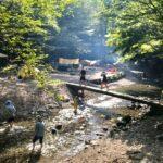 大鳩園キャンプ場の紹介・予約方法|オートキャンプも川遊びもデイキャンプもできる!関東のキャンプ場